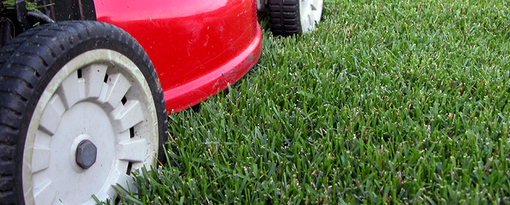 quick-tips-mower-height